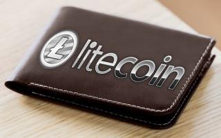 Самые популярные кошельки для хранения Litecoin