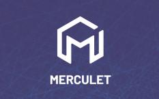 Обзор проекта глобальной бизнес платформы Merculet и детали ICO