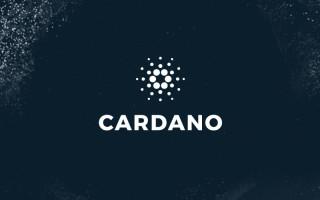 Криптовалюта Cardano – описание платформы, майнинг и способы покупки токенов