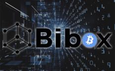 Обзор биржи Bibox для торговли криптовалютой