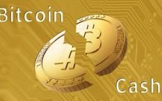 Биткоин кэш – обзор криптовалюты, прогноз и причины появления