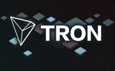 TRON – высокая активность инвесторов и прогнозируемый рост в 2018 году
