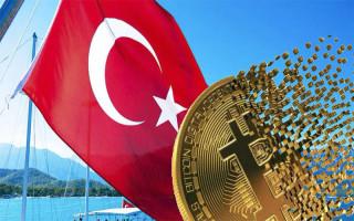 Турция планирует запустить цифровую лиру во втором полугодии 2021