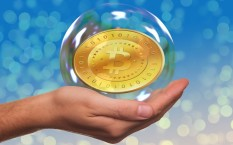 Биткоин — пузырь 21 века или гениальная инновация?