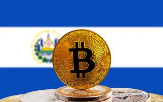 Сальвадор использует прибыль от биткоина для строительства ветеринарной клиники