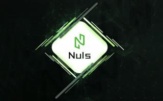 Nuls – адаптивный блокчейн для корпоративных решений