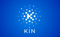 Криптовалюта Kin – децентрализованная экосистема цифровых услуг
