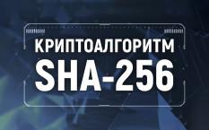 Алгоритм SHA 256 – особенности майнинга и виды криптовалют
