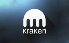 Обзор криптобиржи Kraken и особенностей ее работы