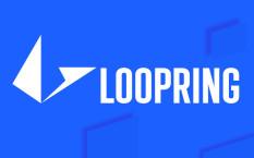 Loopring – протокол для децентрализованного обмена криптовалюты