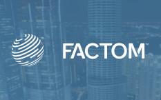 Криптовалюта Factom – децентрализованное хранение информации
