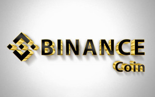 Обзор криптовалюты Binance coin и перспективы ее развития