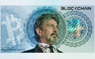 Состоялся анонс выпуска фиатной валюты от Джона Макафи