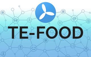 Обзор проекта TE-FOOD и детали проведения ICO