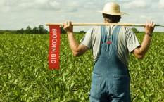 BioCoin — поддержка фермеров, зеленой экономики и окружающей среды