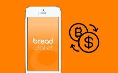 Что думают создатели кошелька Bread о форке биткоина