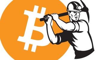 Майнинг биткоинов – как работает процесс добычи и что нужно знать начинающему майнеру