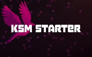 KSM Starter – ведущая стартовая площадка от Kusama Network