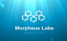 Обзор проекта платформы Morpheus Labs на базе PaaS B2C и детали ICO