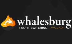 Обзор пула Whalesburg с концепцией Profit-switching