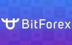 Криптовалютная биржа BitForex – преимущества и размер комиссий