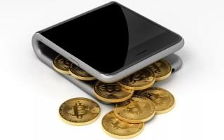Виды кошельков для хранения биткоин и критерии выбора