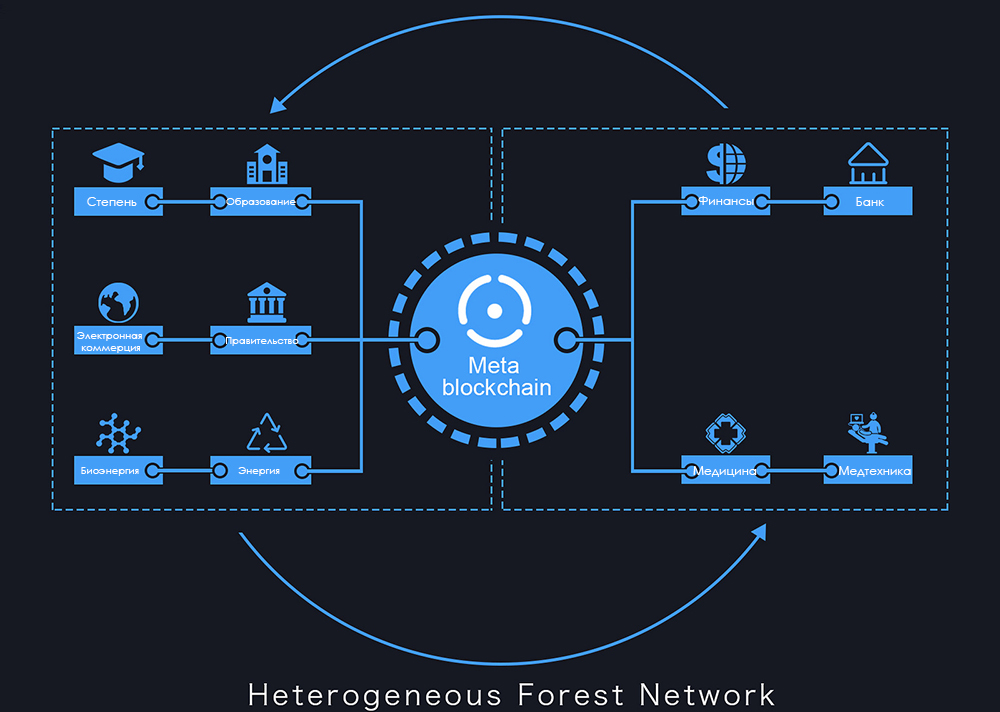 Forest Network