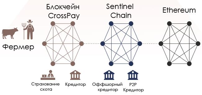 Схема работы Sentinel Chain