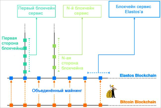 Структура блокчейна Elastos
