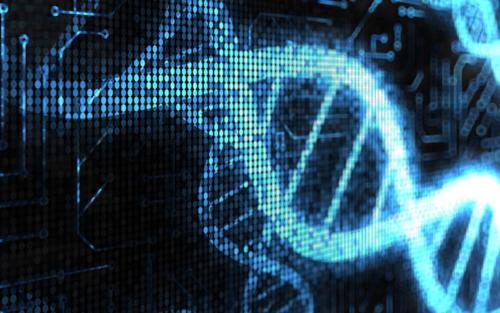 ДНК на блокчейне