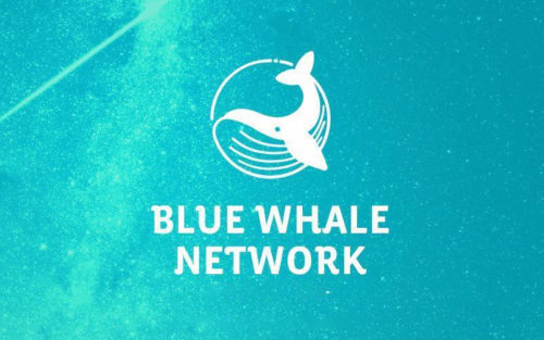 Проект Blue Whale