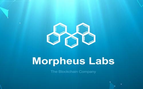 Проект Morpheus Labs