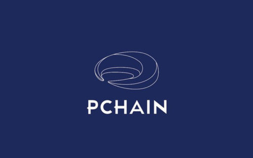 Проект Pchain