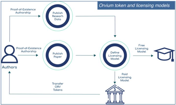 Токен и модели лицензирования