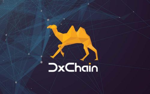 Проект DxChain