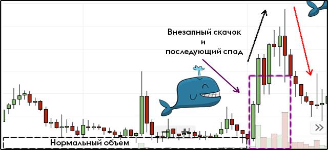 Манипуляции китов