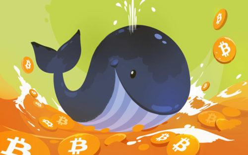 Криптовалютные киты